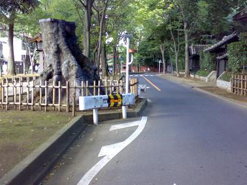 2009101033_2